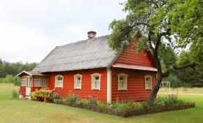 Holiday houses in the Belovezhskaya Pushcha. Holiday house U Alesya, Brest Region