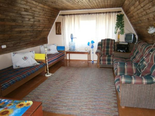 Holiday house Bogomazov dvor, Gomel Region
